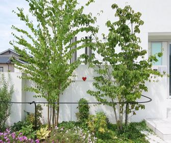 お庭のパーツ落葉樹